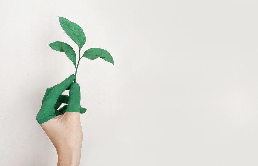 Customer Success: todos devem e podem crescer juntos