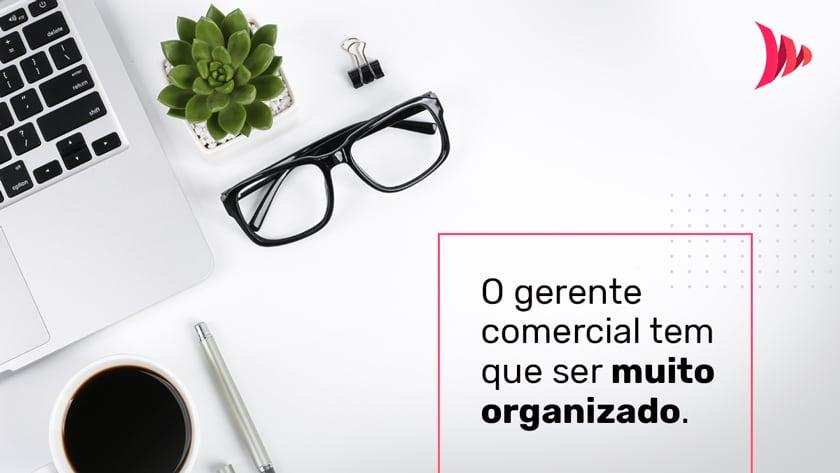 Gerente comercial e organização